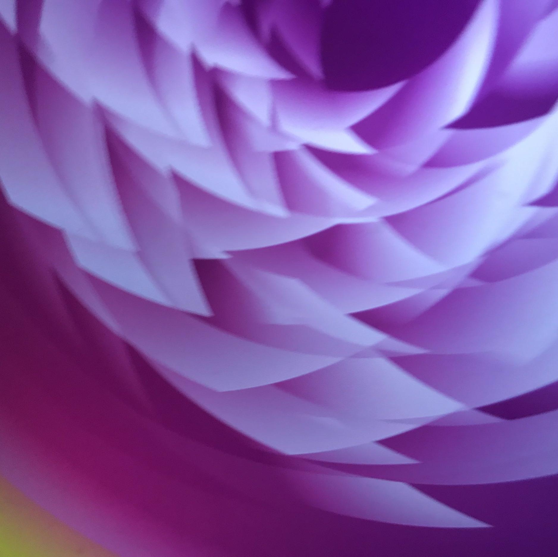"Rite of Spring • 12""x12""Giclee Print • Version X"