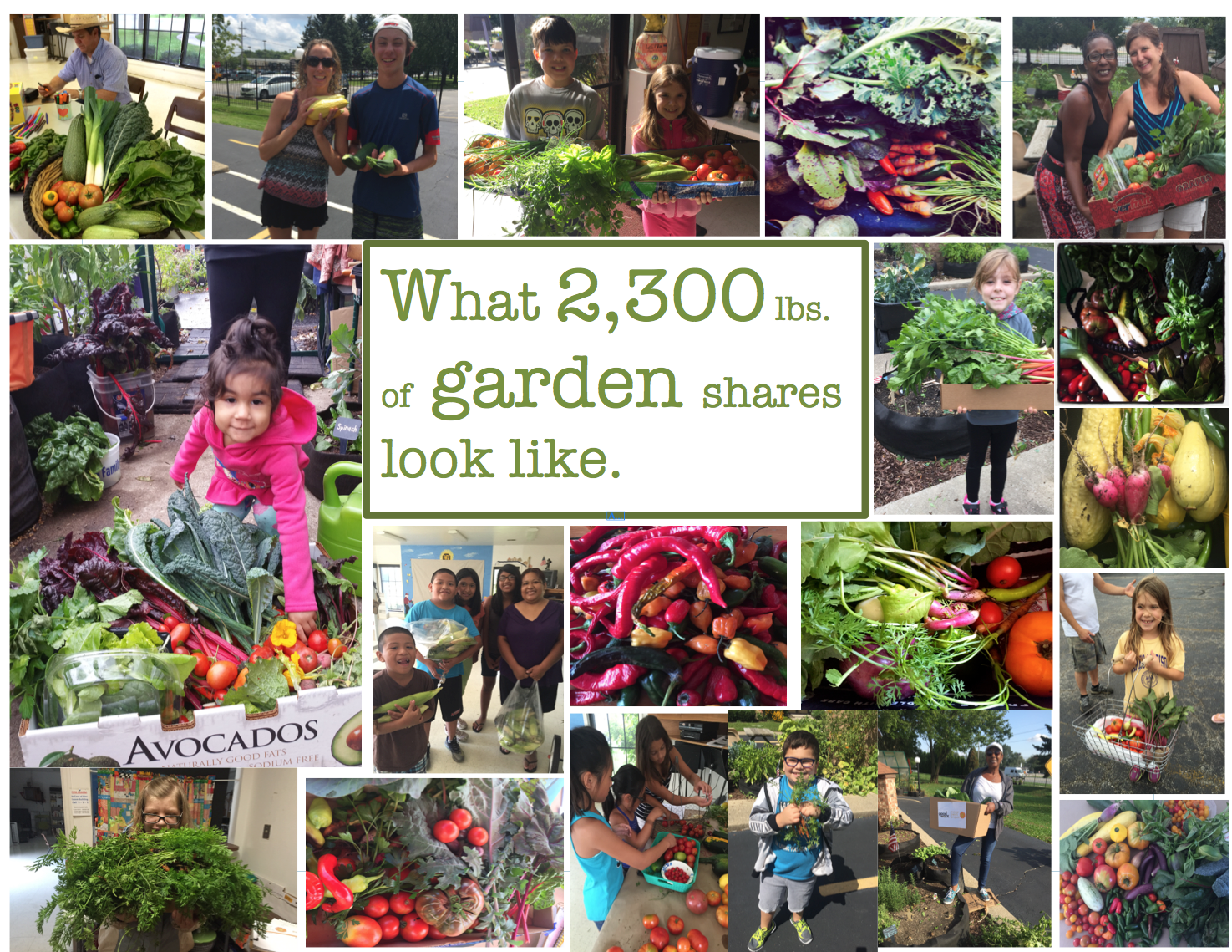 Since the spring of 2015 we've gone about starting garden patches in our community to raise awareness about families in our community struggling to access food, especially garden fresh foods. We've invited families to grow with us. We've provided all of the materials necessary, as well as the instruction, to get families growing some of their own garden fresh vegetables. We've grown and distributed over one ton of garden shares with our select families as well as local food pantries.  We're working to establish more garden patches around our community so we can work to assist even more families and introduce our neighbors to the power of growing one's own food.  If you would like to get involved please consider clicking on the  Volunteer Here  Tab in the upper left menu and leave your contact info.  We're working to see that hunger has no place here in Darien.