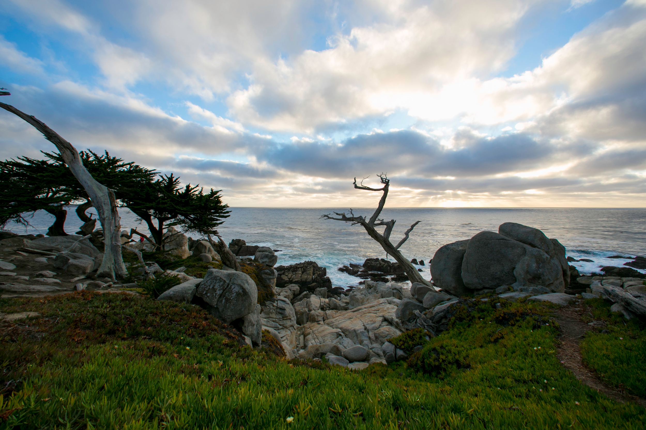 17-mile drive in Monterey