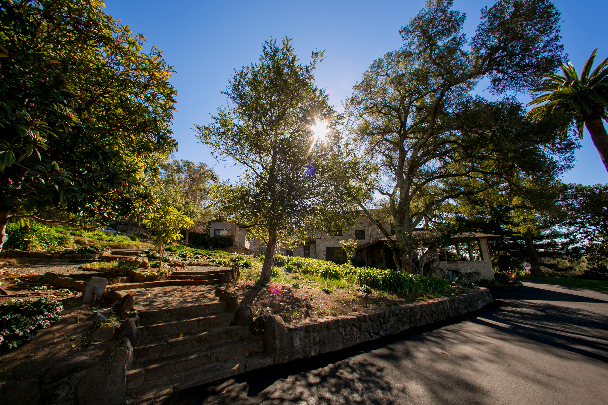 Our grand finale was at Stags' Leap Estate in Napa Valley, and we truly did save the best for last!