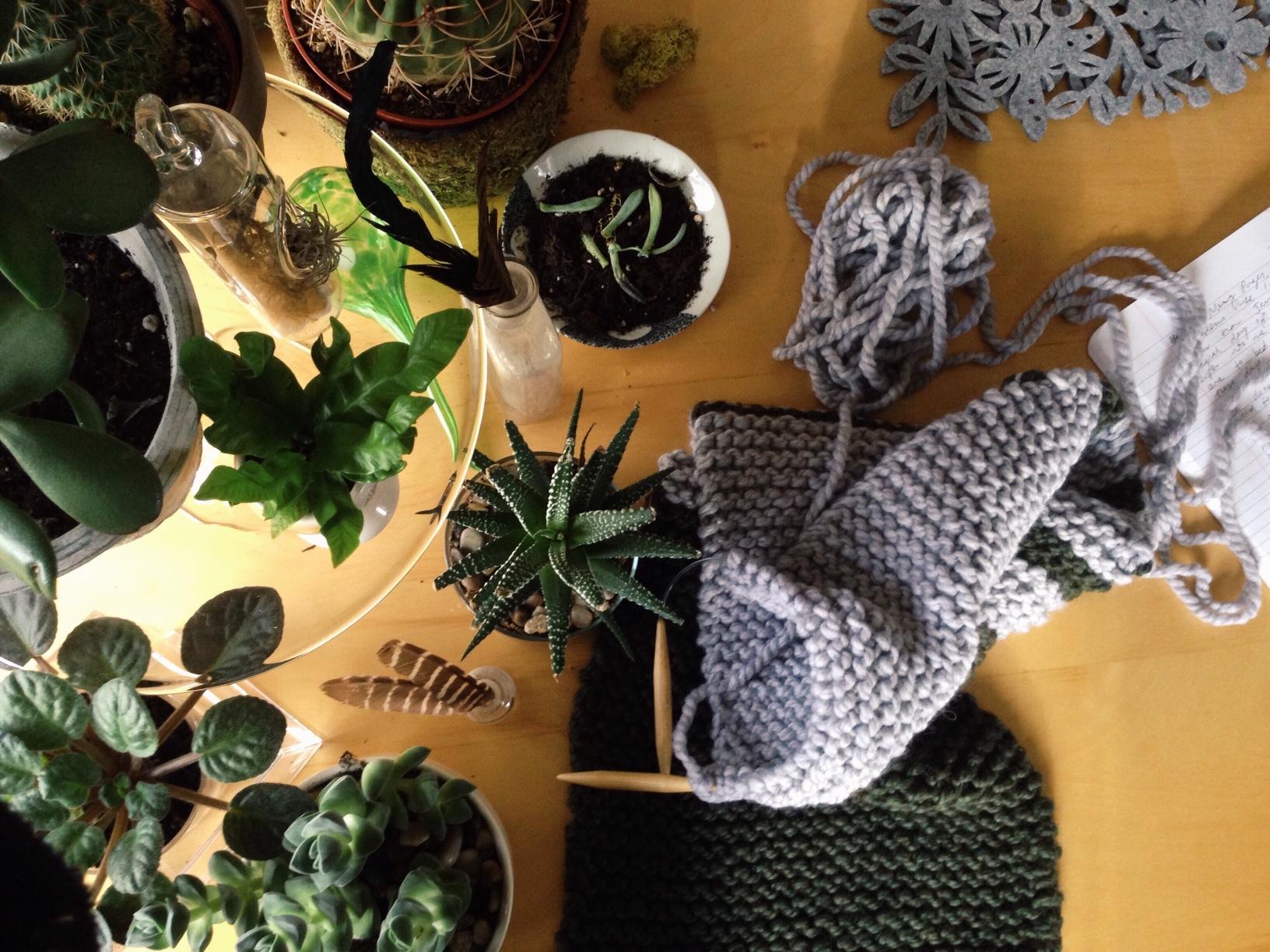plants and knitting table top tara galuska