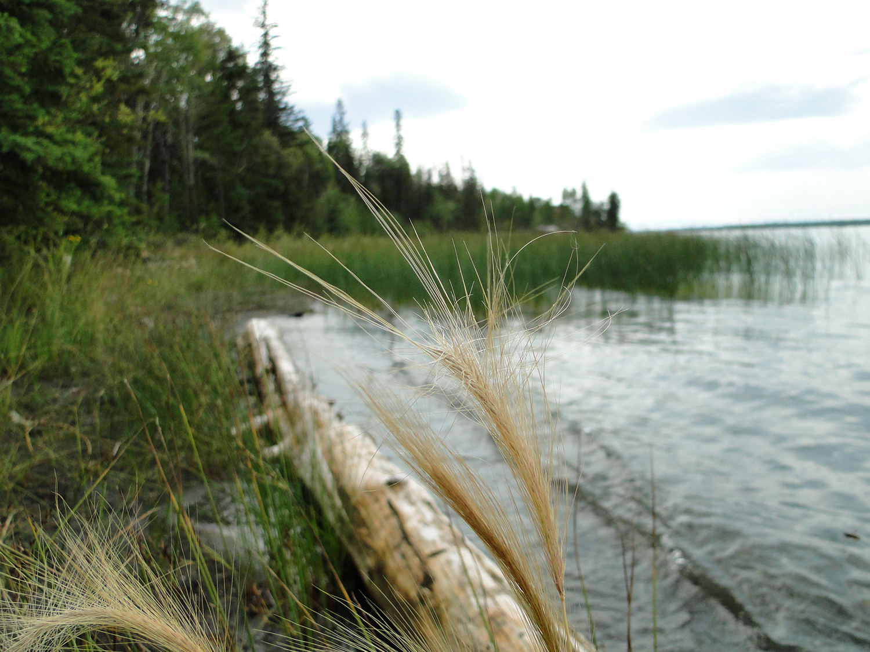 Green Lake BC Canada.jpg