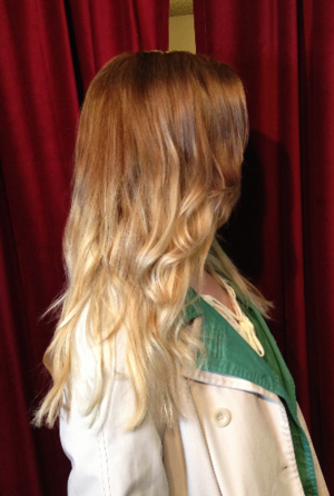 Ombre by Madelyn