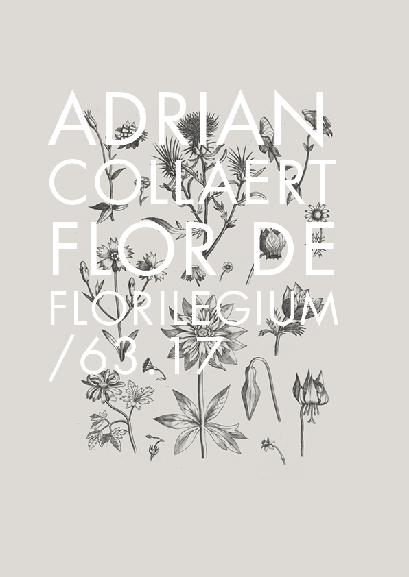 Florilegium_web.jpg
