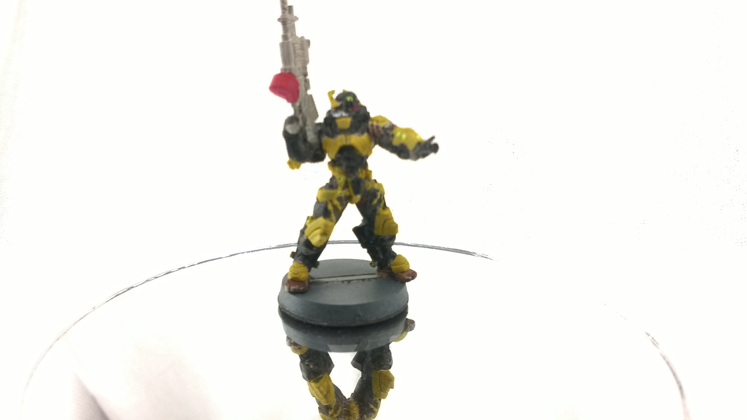 Rodok, Armed Imposition Detachment