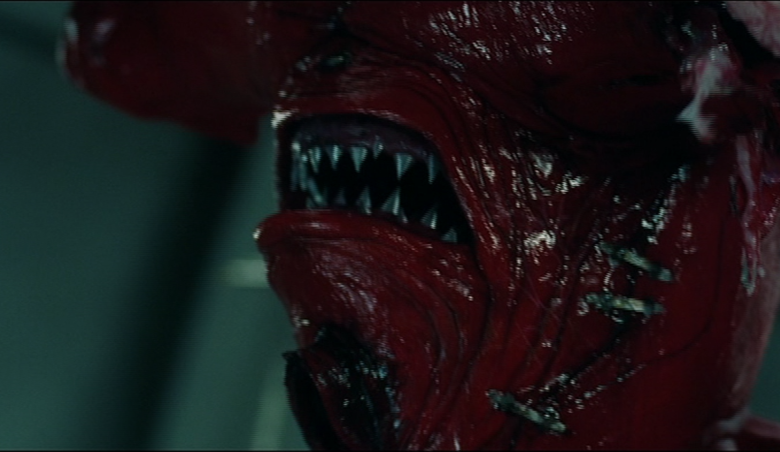 Looks incredibly practical - odd considering some of the other effects in this movie.