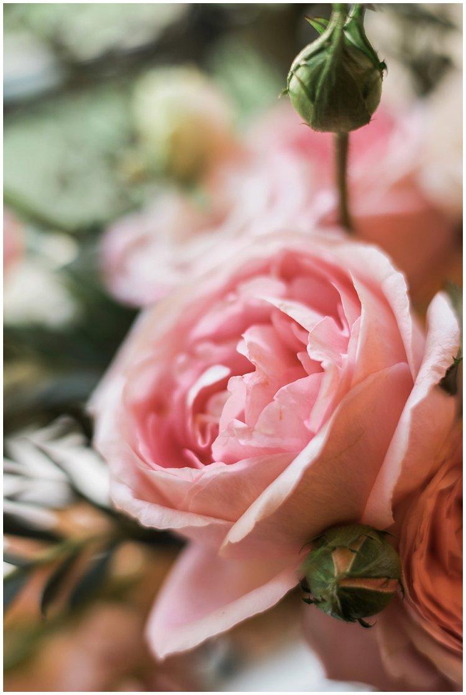 powel crosley wedding sarasota_0210.jpg