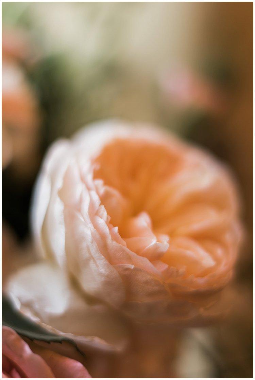 powel crosley wedding sarasota_0212.jpg
