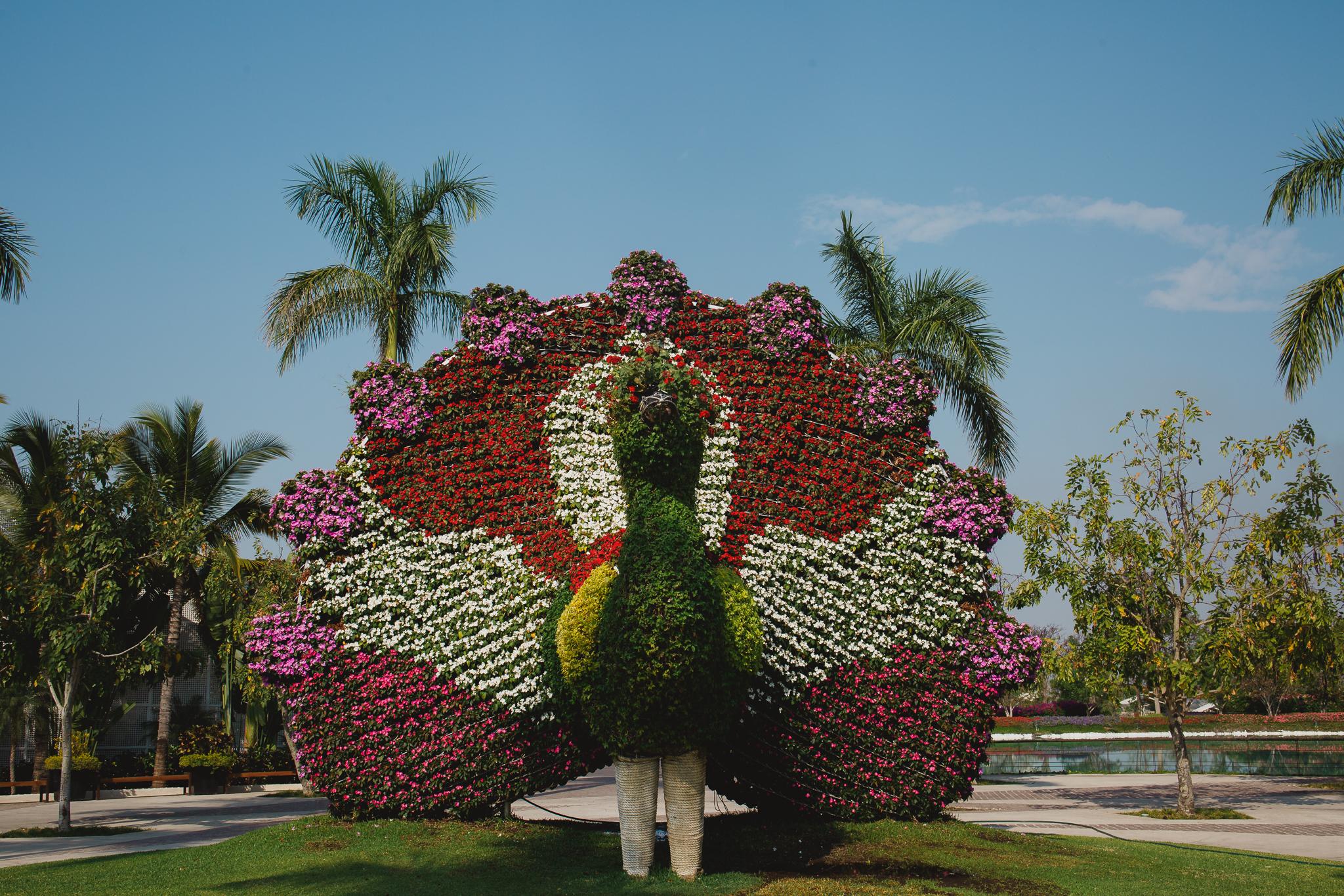 Danny and Hector Blog_ Jardines de Mexico_ Destination Wedding_ Elizalde Photography (8 of 265).jpg