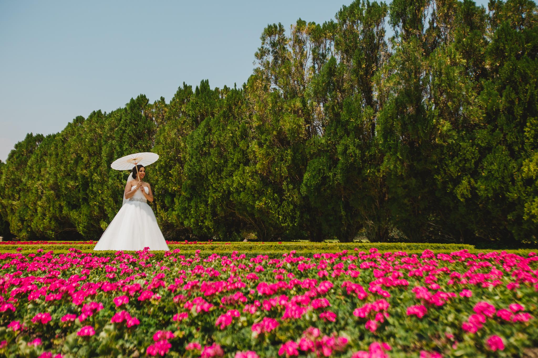 Danny and Hector Blog_ Jardines de Mexico_ Destination Wedding_ Elizalde Photography (52 of 265).jpg