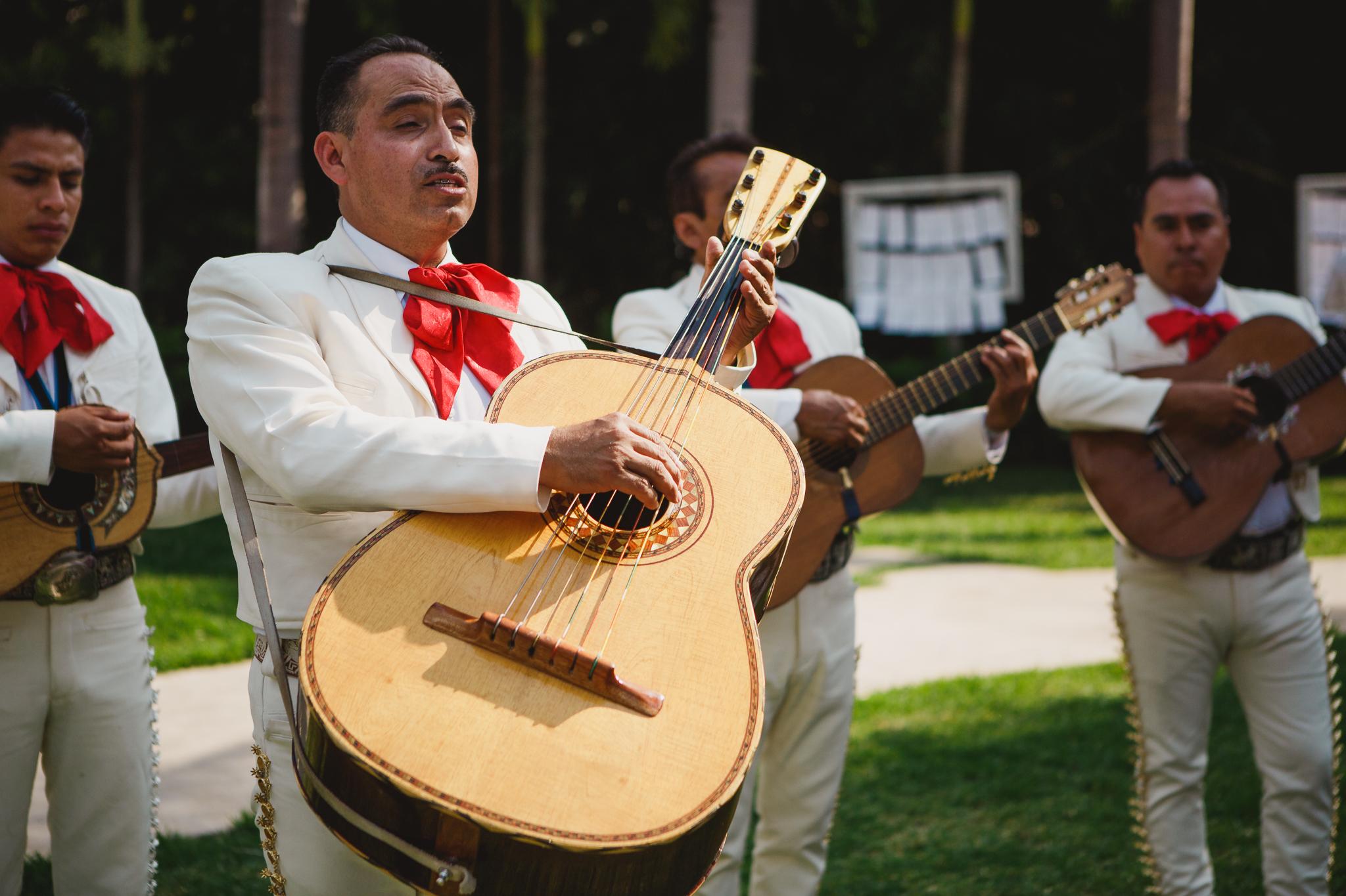 Danny and Hector Blog_ Jardines de Mexico_ Destination Wedding_ Elizalde Photography (146 of 265).jpg