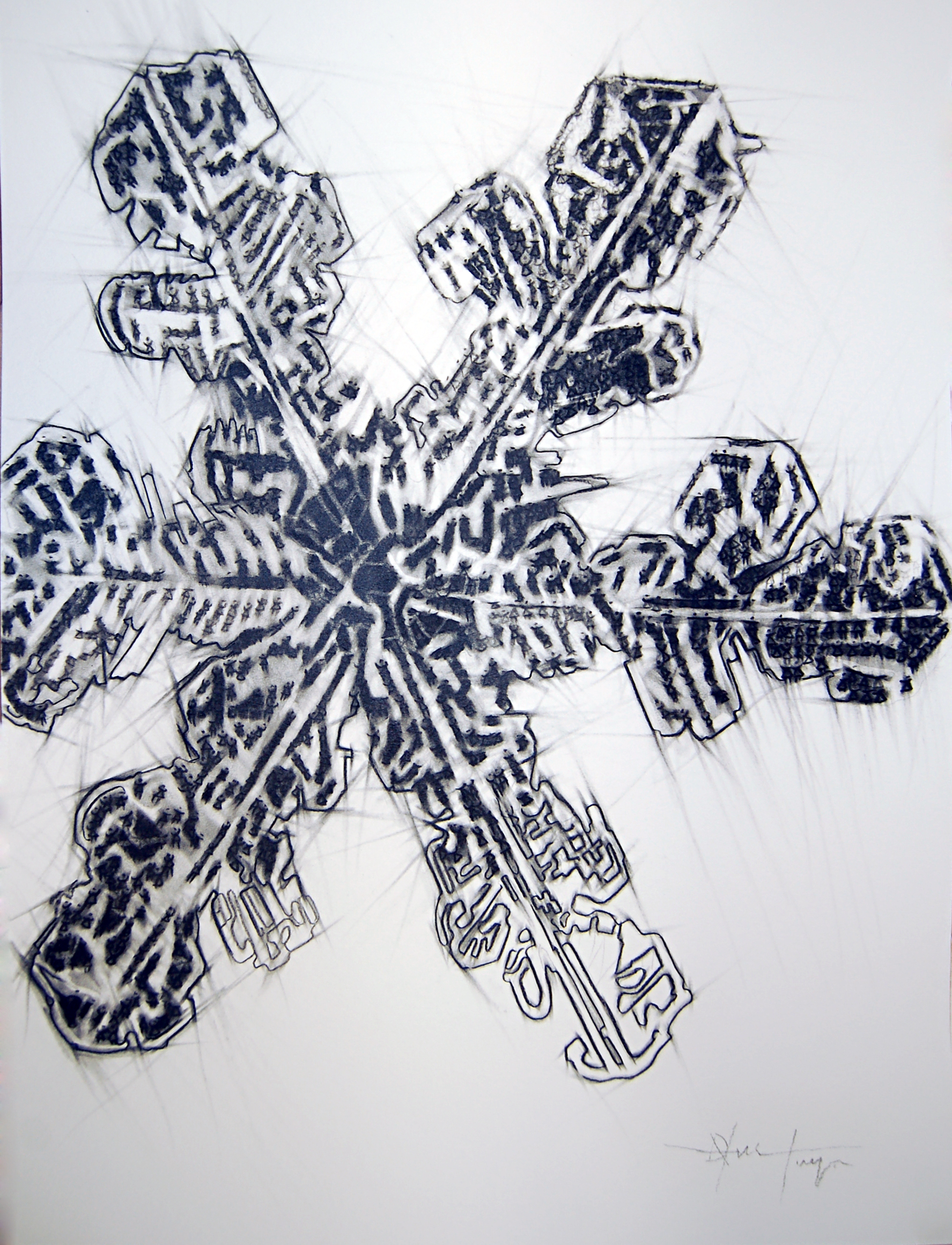 Discovery Series #1 (Snowflake), Charcoal on Paper, 2014, 45.7cm x 61cm