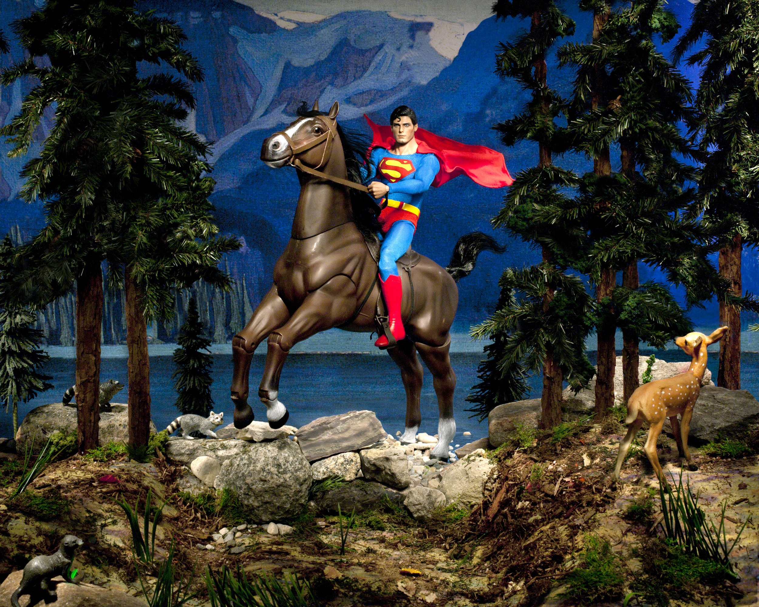 "Lake O'Hara (Clark, Northern Dancer and the Evil Weasel), Digital Photograph, 2012, 30"" x 24"""