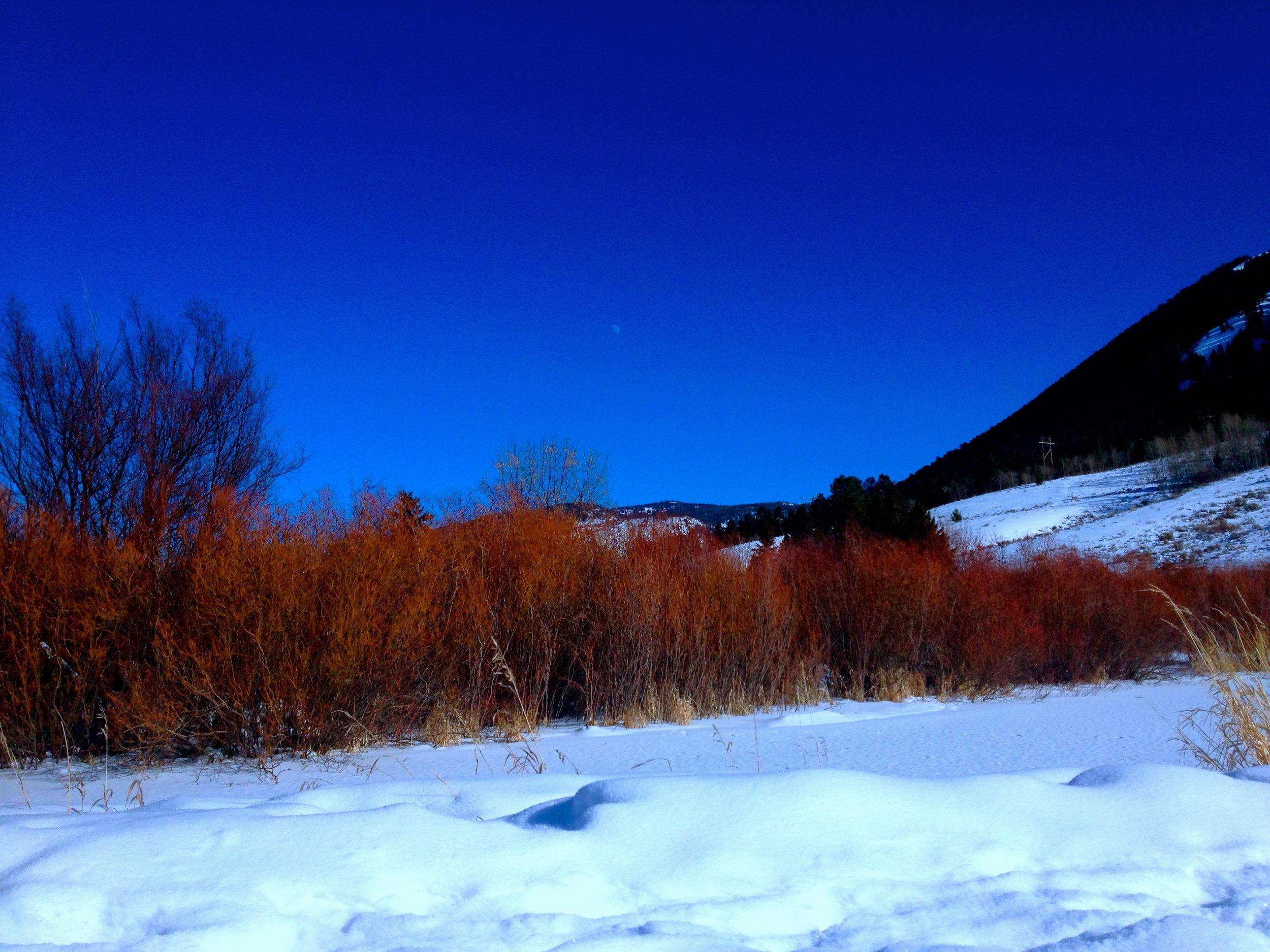 Garamond Trail, Jackson, WY