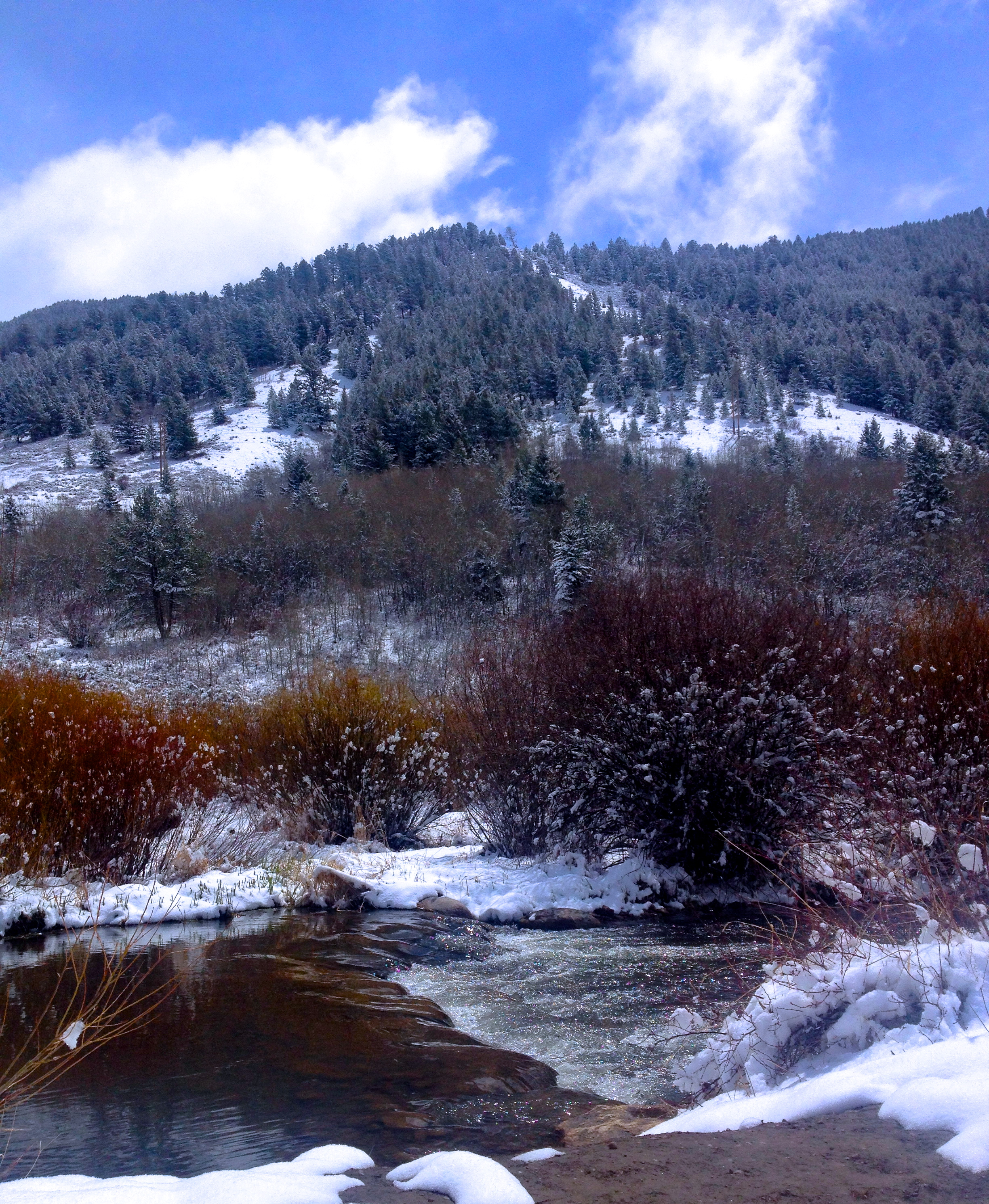 flat creek and snow king