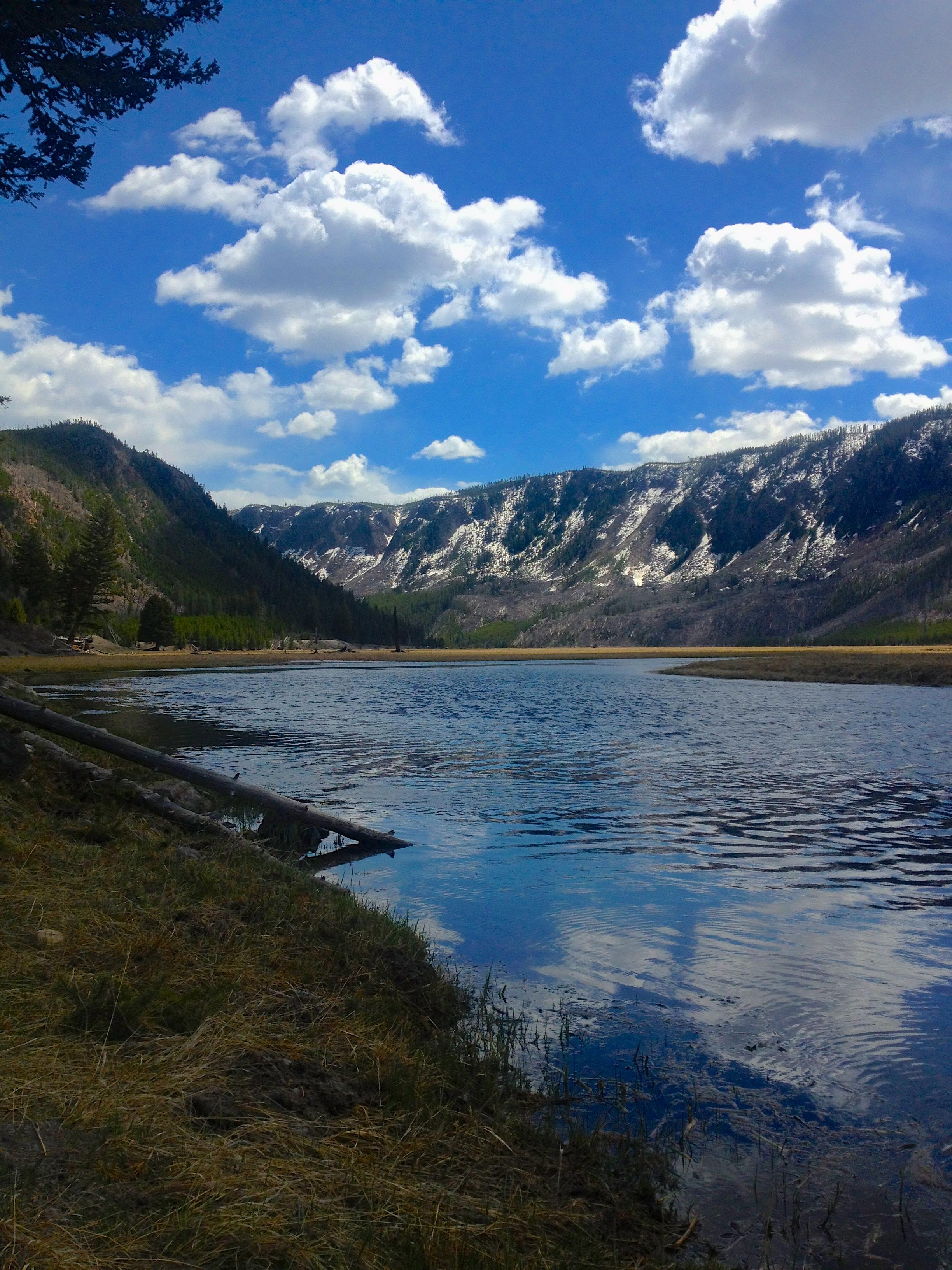 Madison River, Madison Canyon, Yellowstone National Park