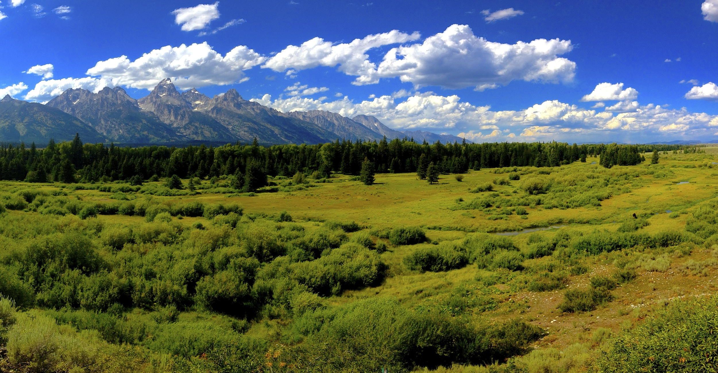 Blacktail Ponds, Grand Teton National Park