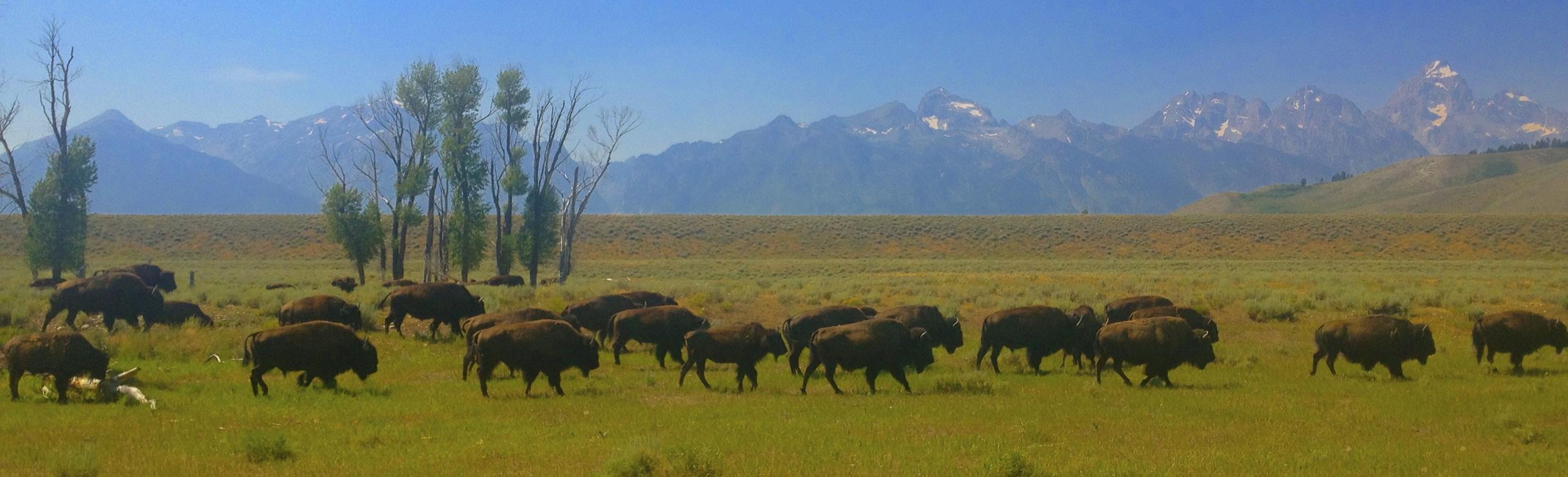 Kelly, Wyoming