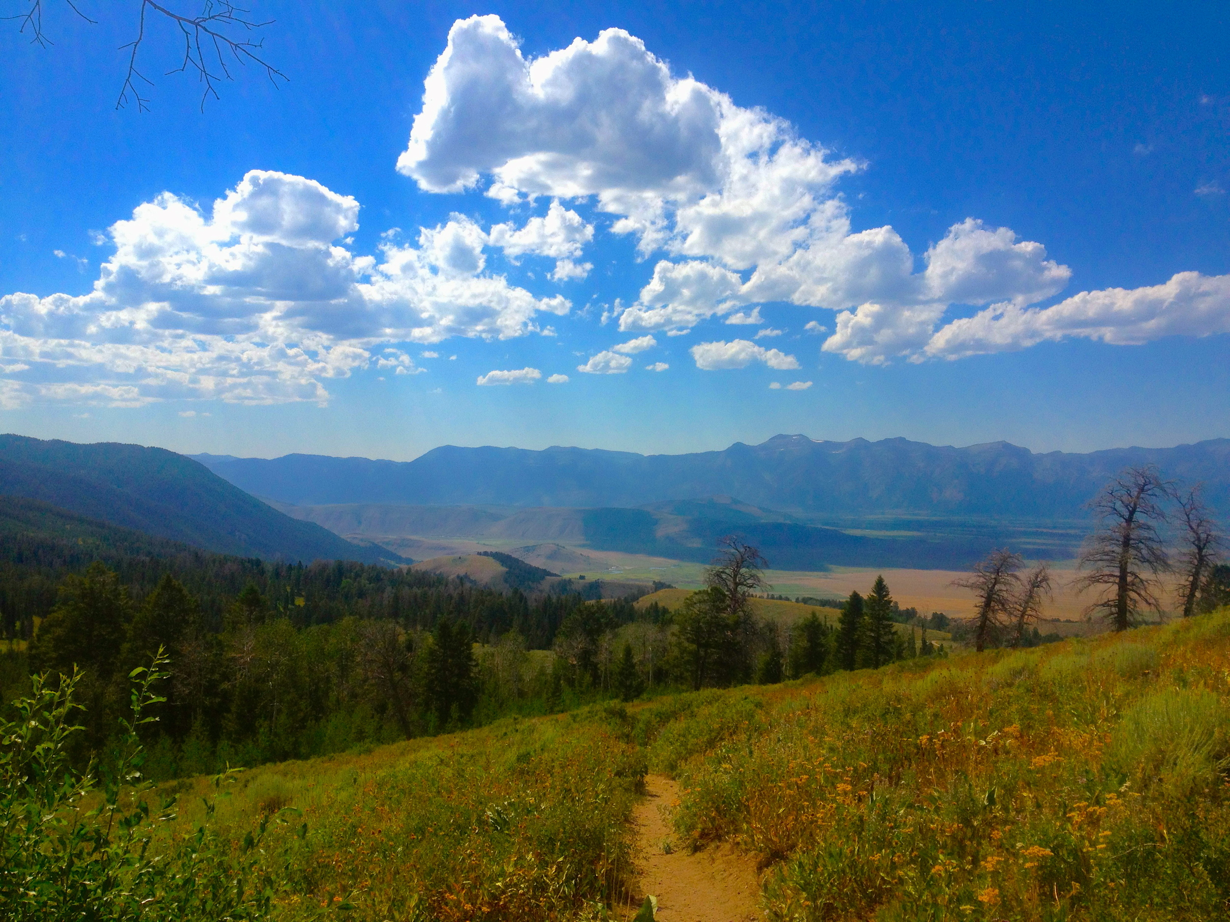 Lake Goodwin Trail, Gros Ventres Wilderness, Bridger Teton National Forest