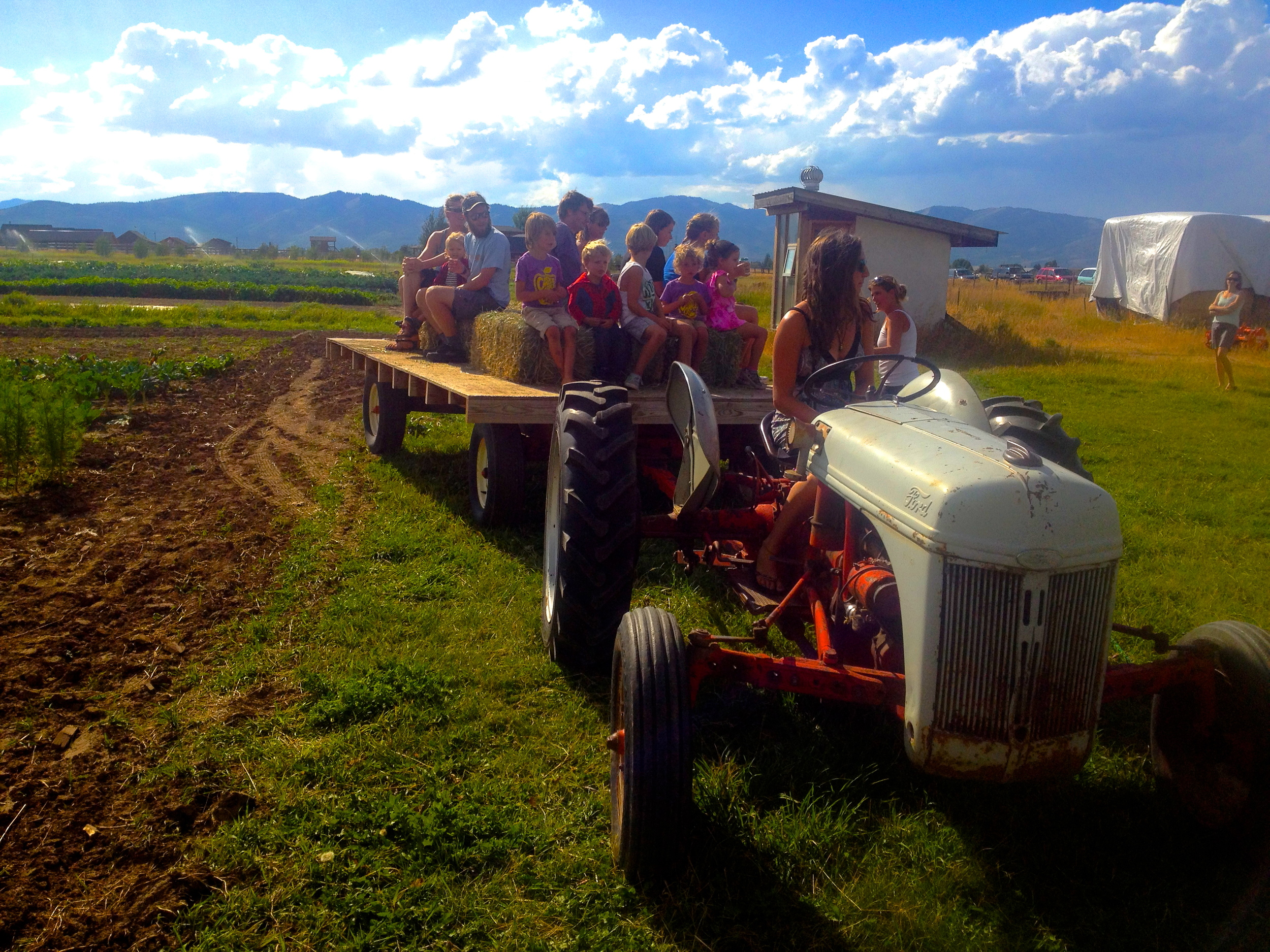 Hayride by Emily