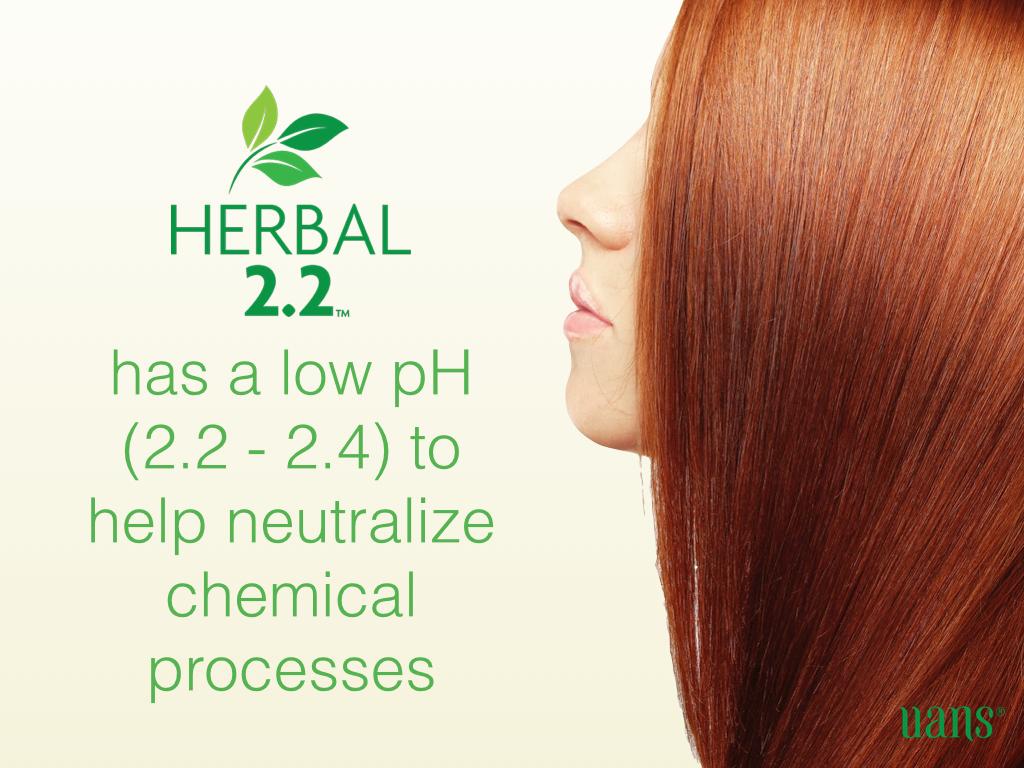 Herbal 2.2 Presentation (English).011.jpg