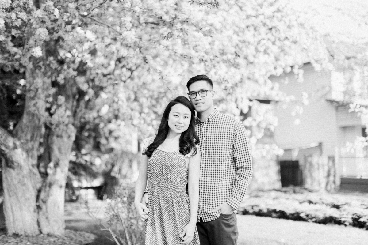 Calgary-wedding Photography-spring-engagement-cherry-tree-0.jpg