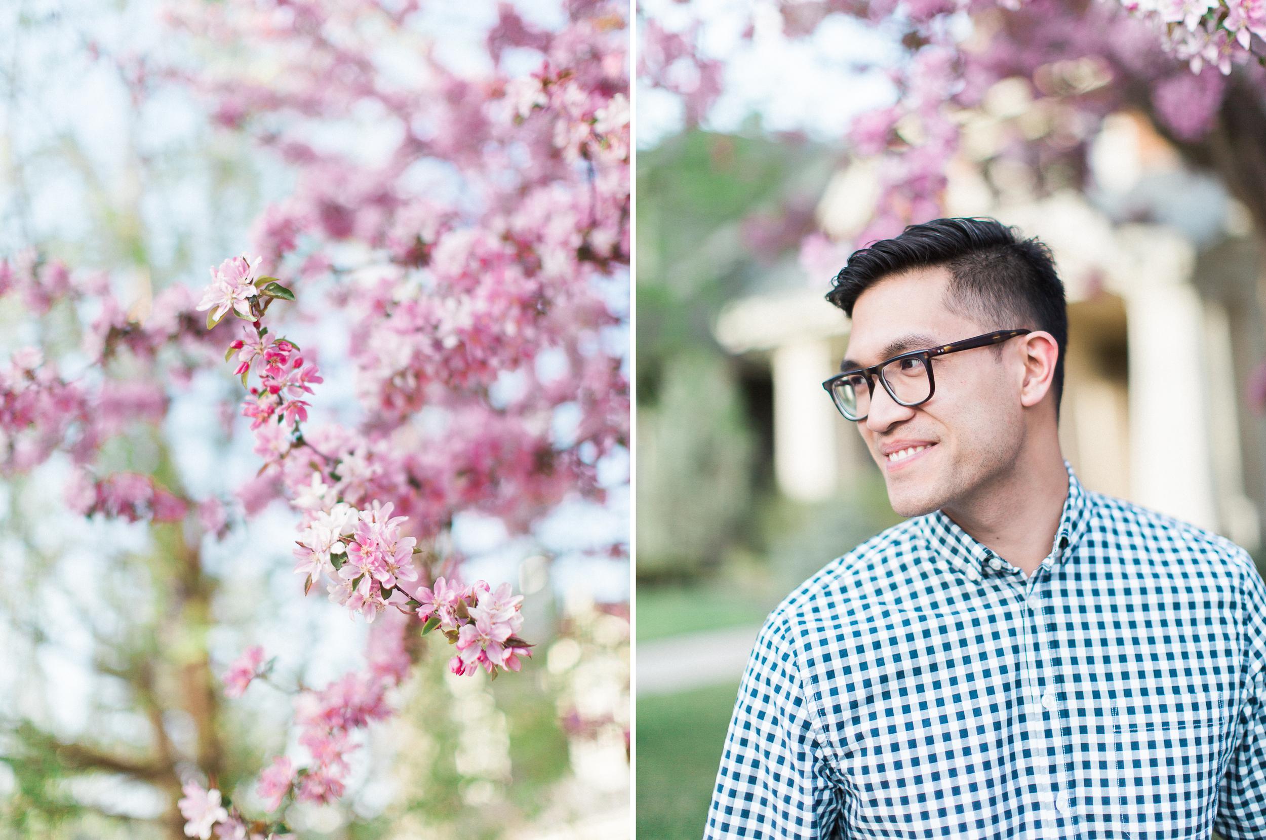 Calgary-wedding Photography-spring-engagement-cherry-tree.jpg