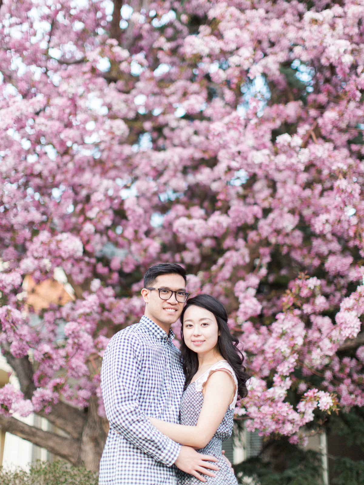 Calgary-wedding Photography-spring-engagement-cherry-tree-8.jpg