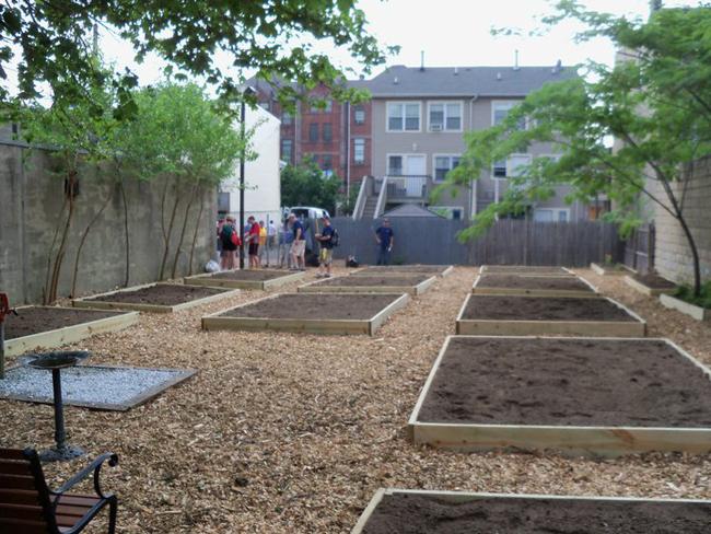 Storms Avenue Community Garden