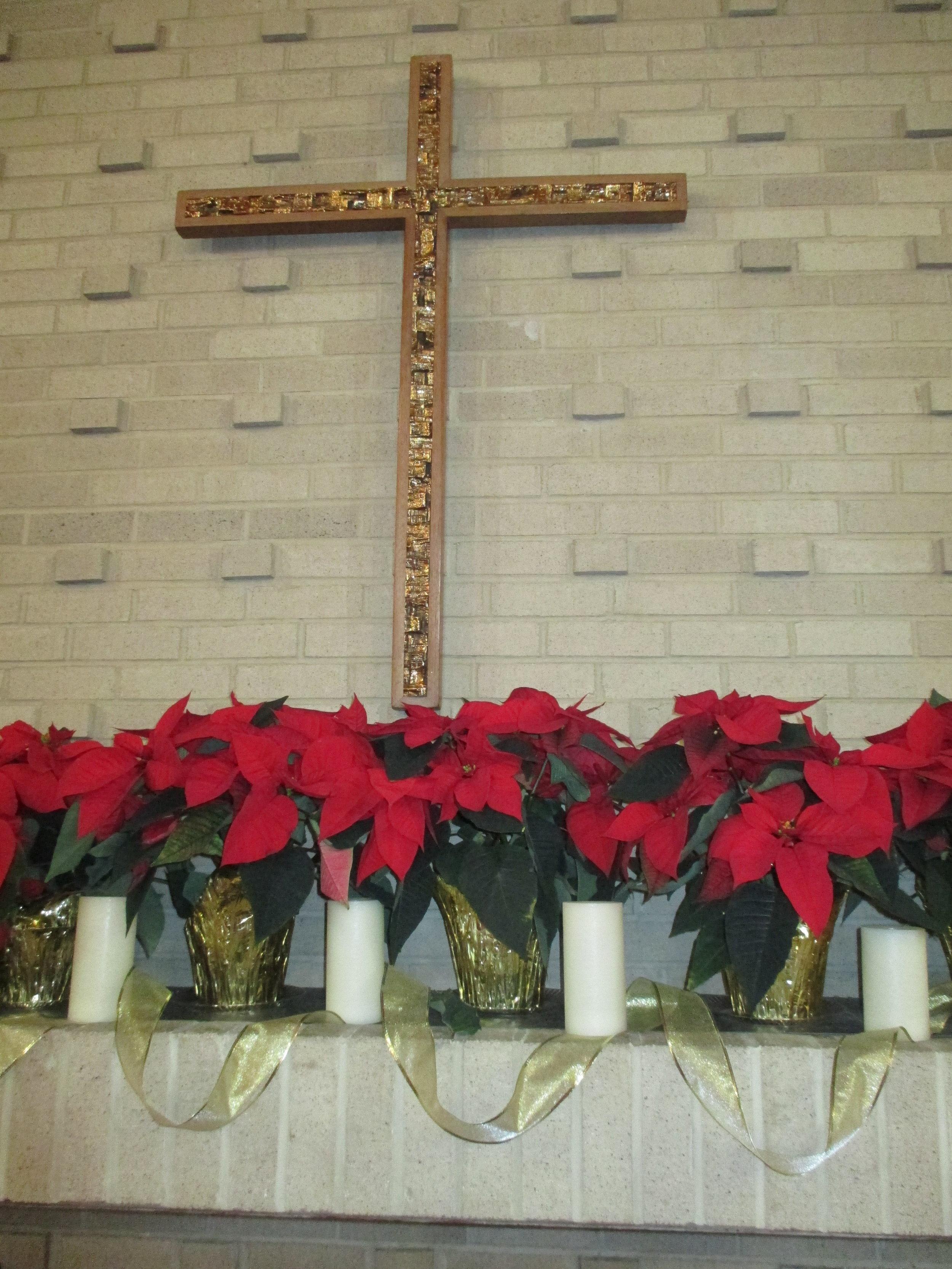 Poinsettias on the altar.JPG