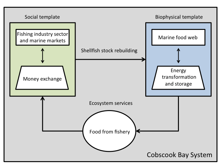 We used a social-ecological systems perspective to explicitly quantify the ecological and economic potential of nearshore fisheries