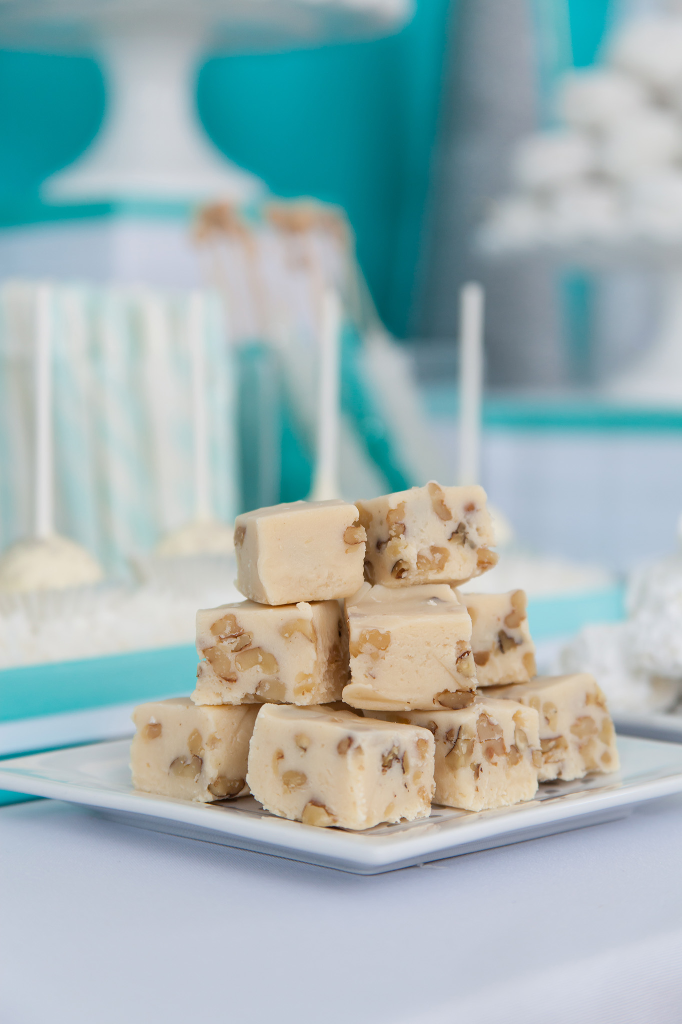 Snow Party Fudge Squares