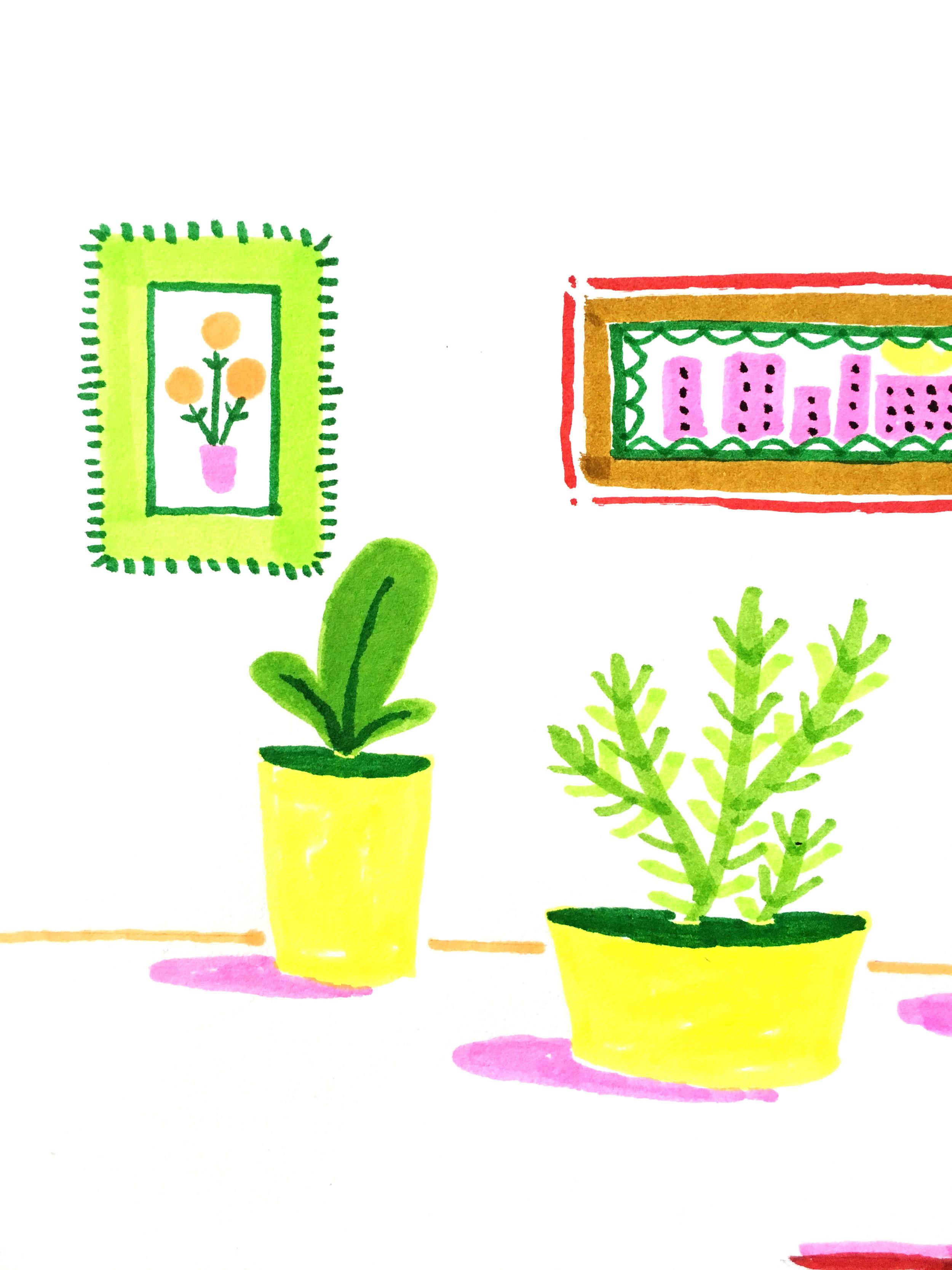 Margaret-McCartney-Plants-sketch