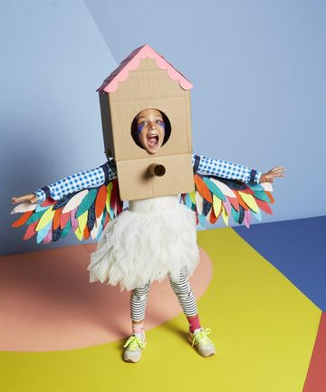 Birdhouse-Box-Costume
