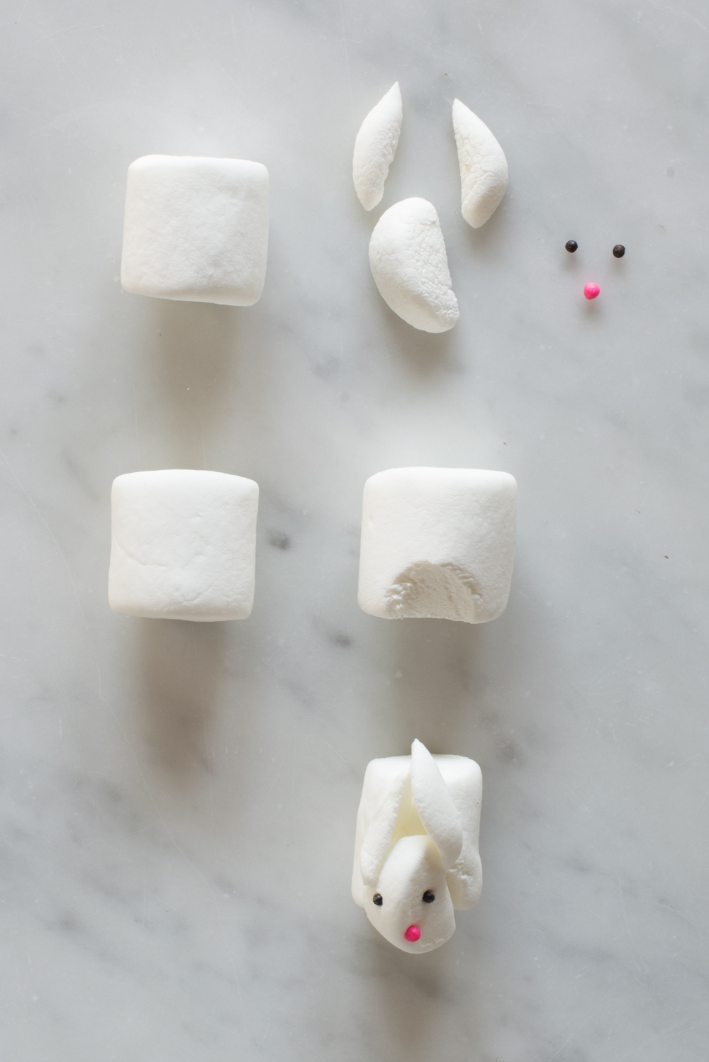 Seal-and-Bunny-How-To-Super-Make-It