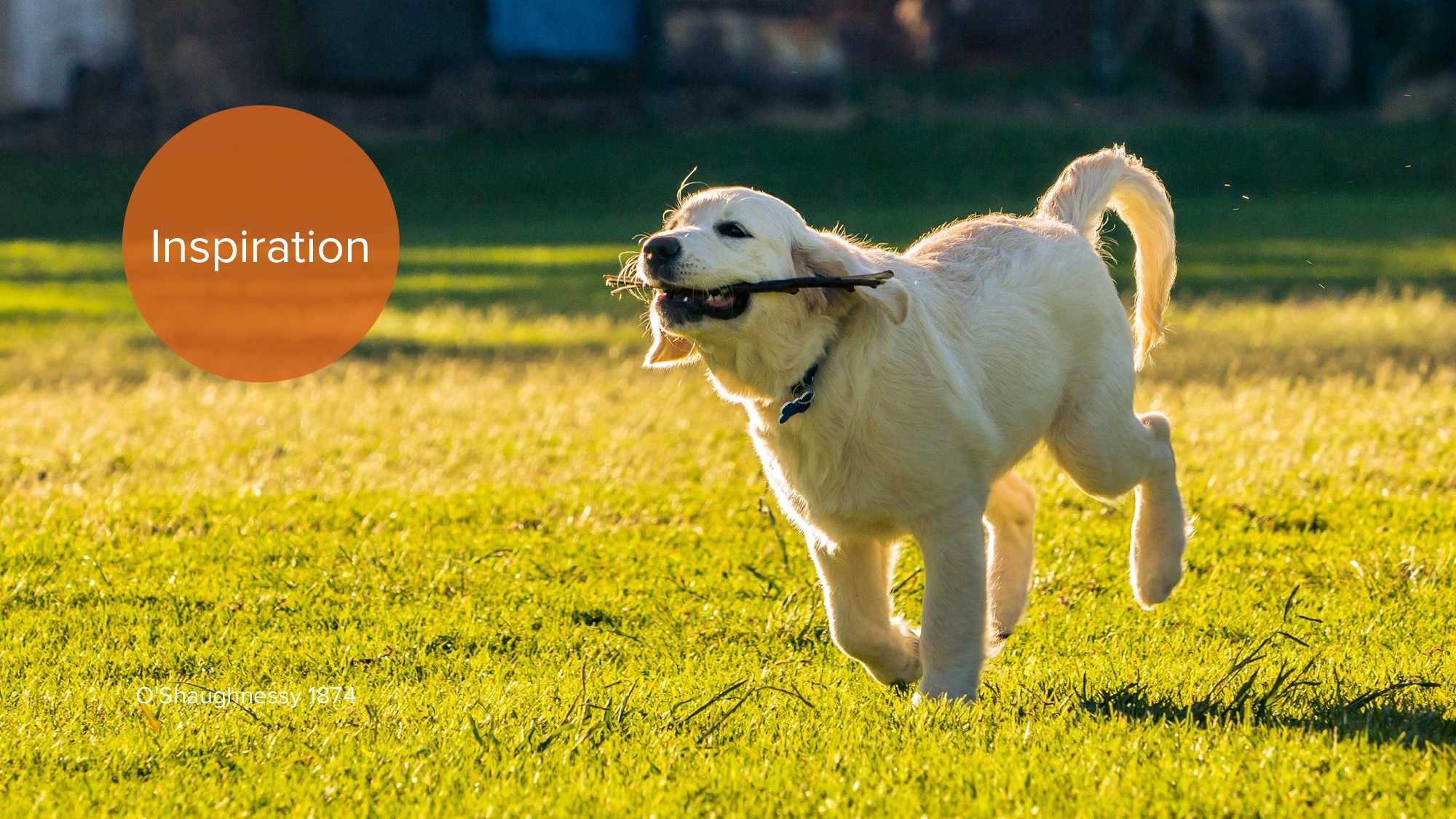 2014.10.17 - -How Are Ideas Connected- Drawing the Design Process of Idea Networks in Global Game Jam- - Meaningful Play 2014 2.jpeg