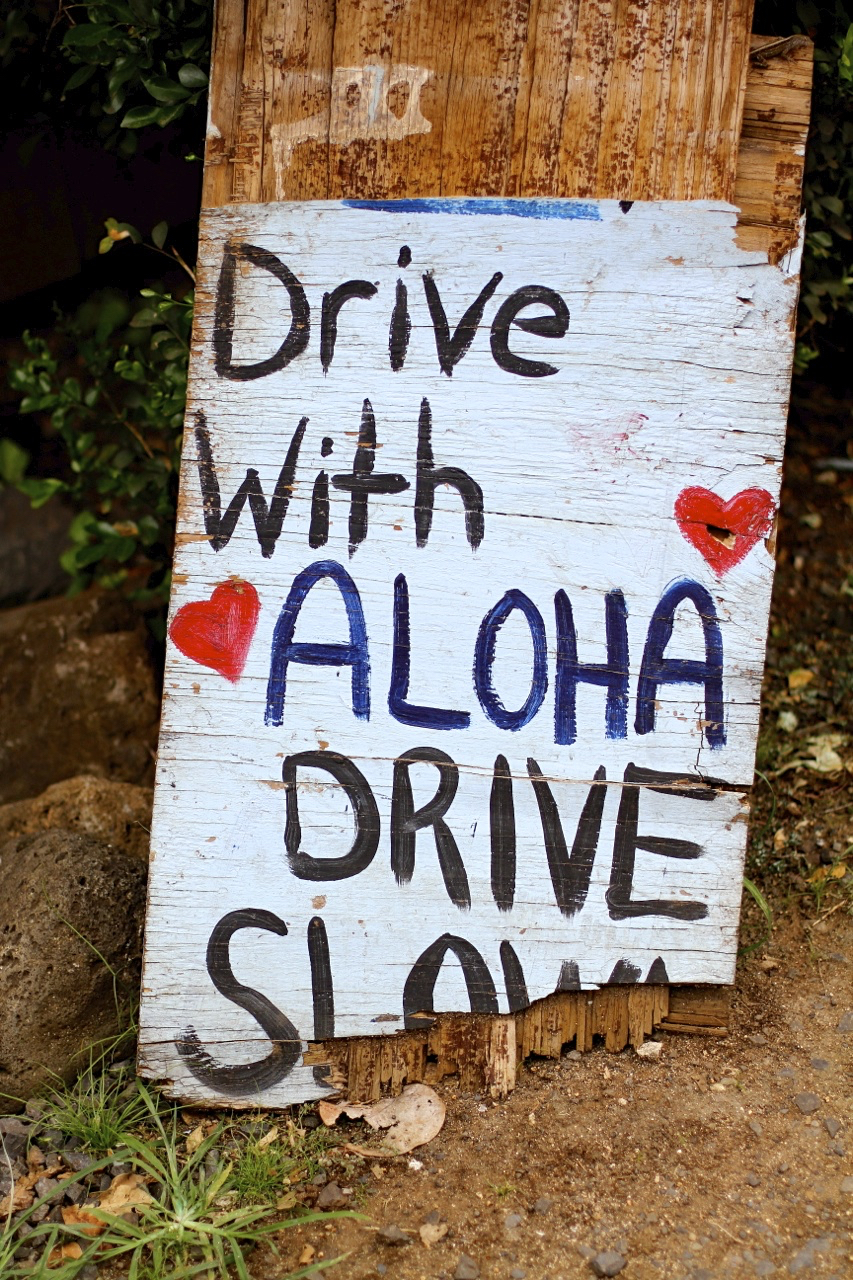 Drive with Aloha | Spring on the North Shore of Oahu | Photo by Amanda Michaels-Zech