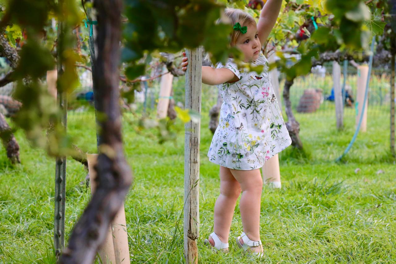 Little Girl in a Vineyard | San Luis Obispo, California | Photo by Amanda Michaels-Zech