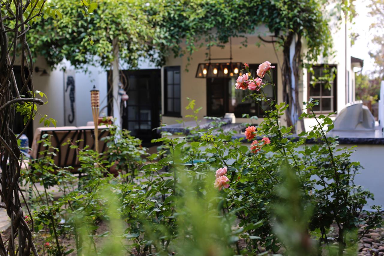 The Garden is Waiting | Los Angeles, California | Photo by Amanda Michaels-Zech