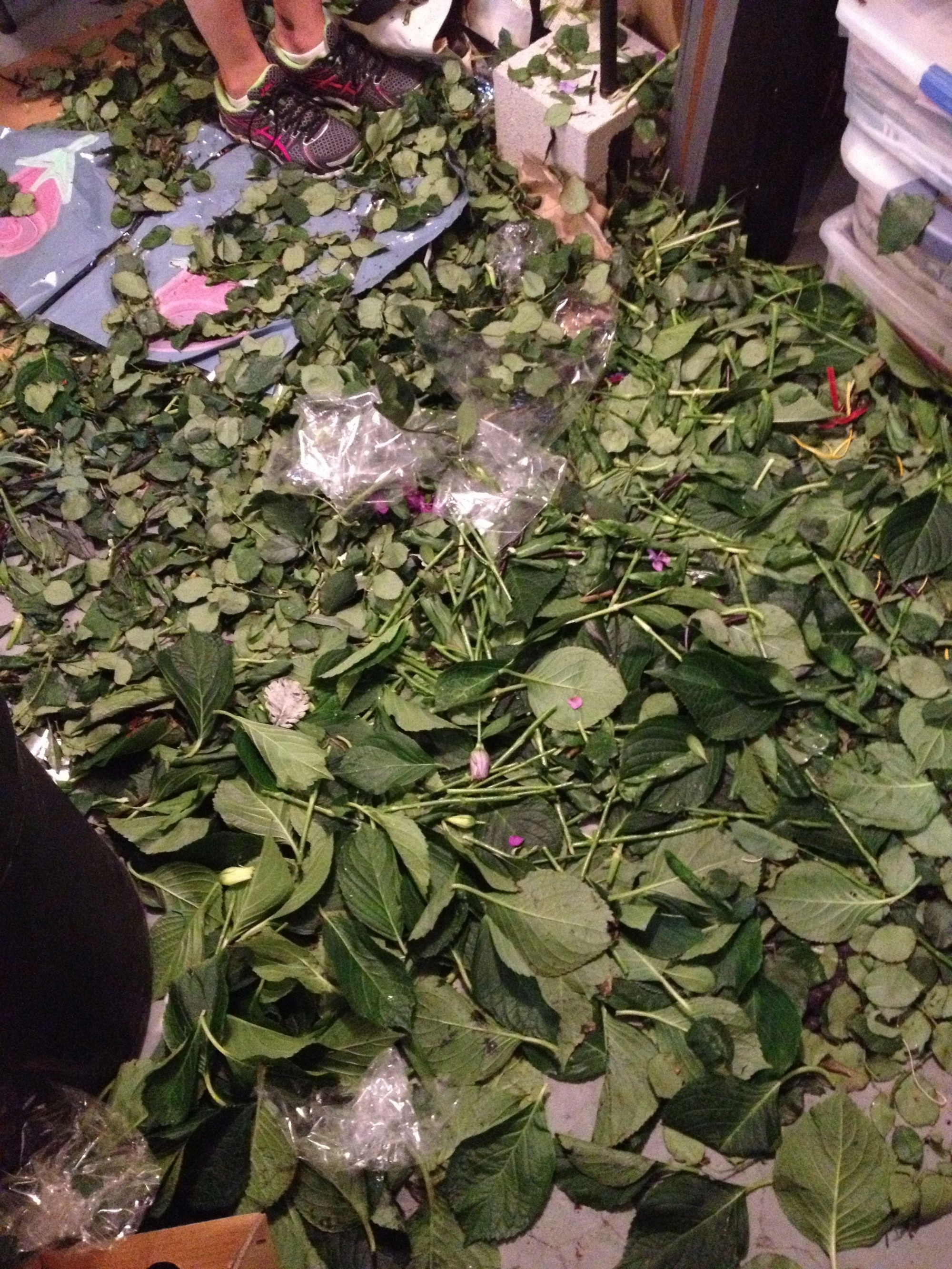 Processing flowers is a dirty job. All the leaves and thorns have to be stripped and the ends of the stems chopped. This left us in a sea of green!