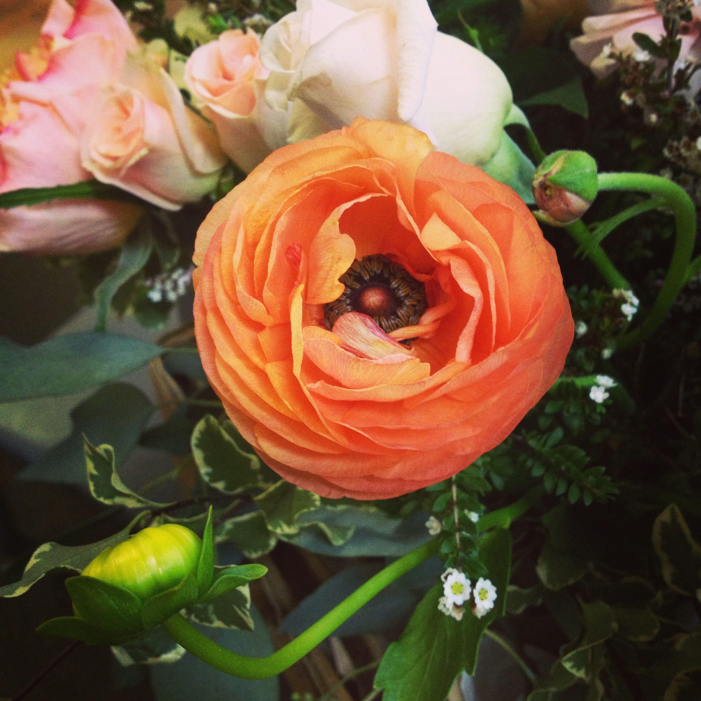 favflower.jpg