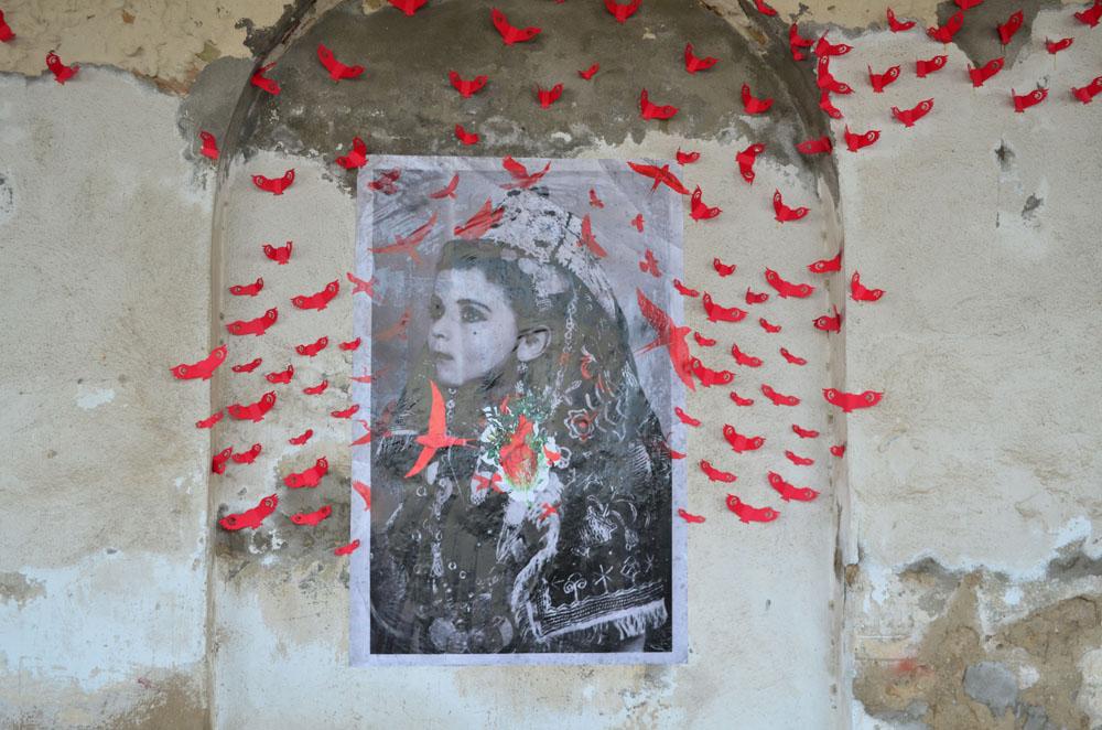 redbird_0079.jpg