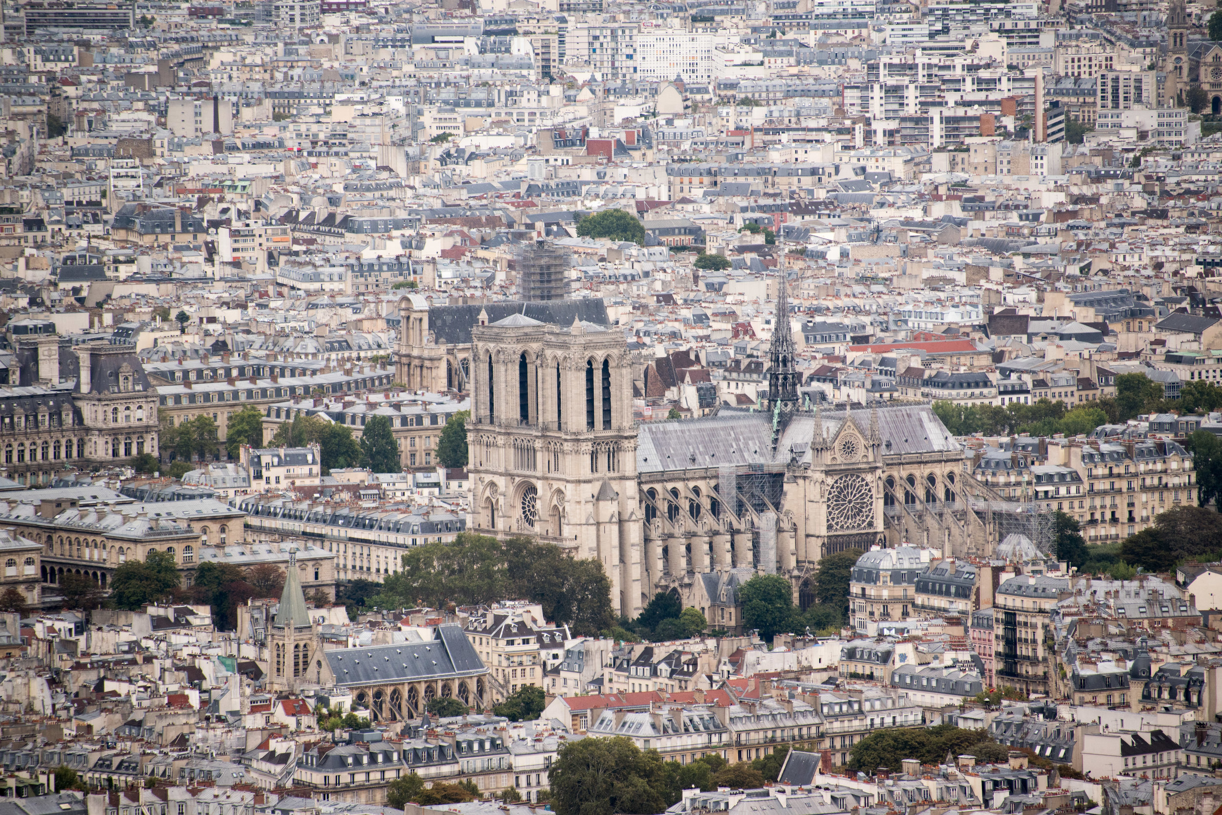 Paris(low)-54.jpg