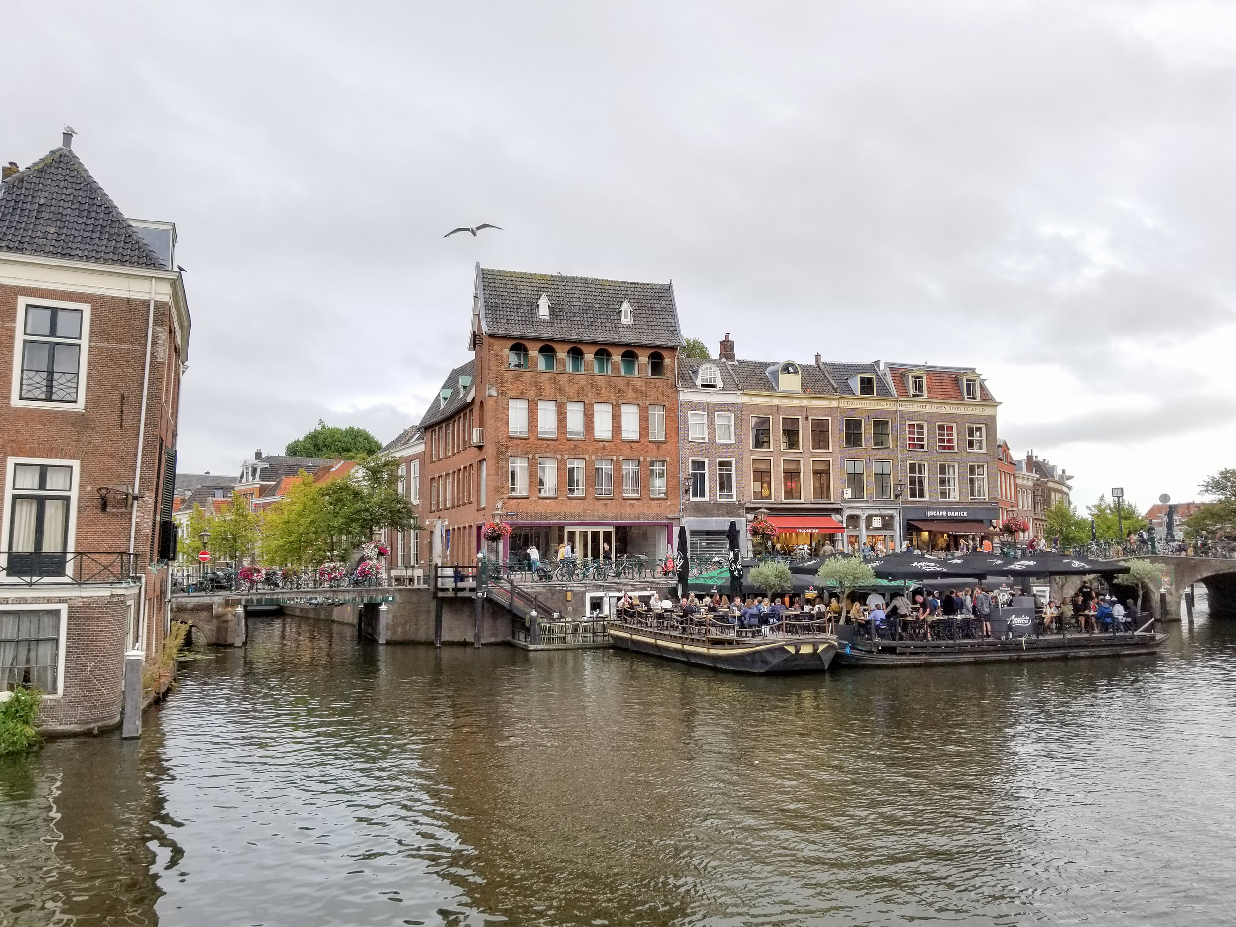 Amsterdam(low)-2.jpg