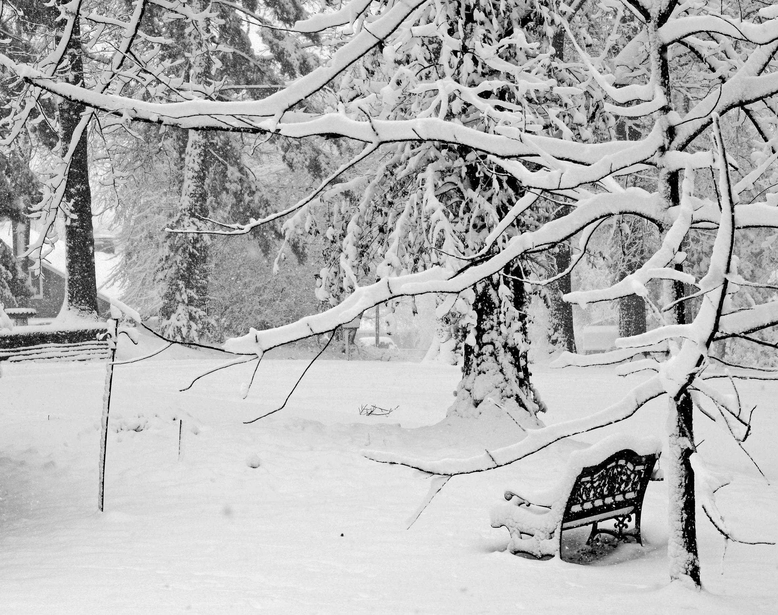 Snow Bench.jpg