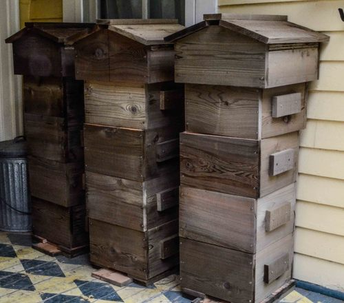 The Newly Built Snob Hill Warré Hives