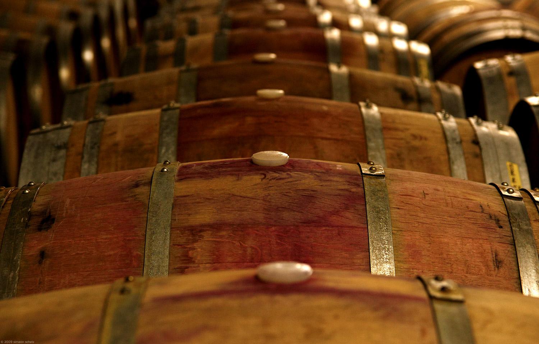 barrels_bodega.jpg