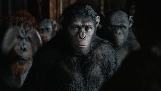 planet-apes-videoSixteenByNine540-v2.jpg
