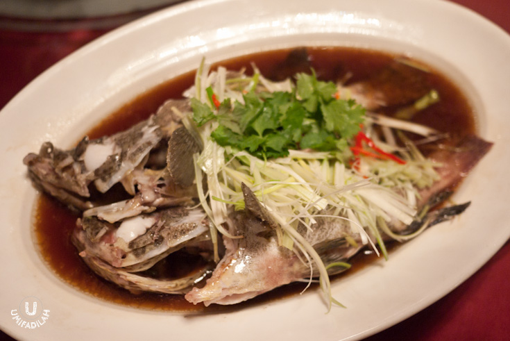Steamed Grouper Fish with Light Soya Sauce    Two grouper fish were steamed and swam on top of light soya sauce, with generous amount of julienned shallots and Wang Sui leaves/cilantro. Simple, but honest dish.