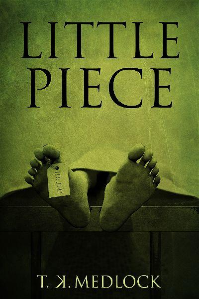 premade-horror-book-cover-design-author-t-k-medlock.jpg